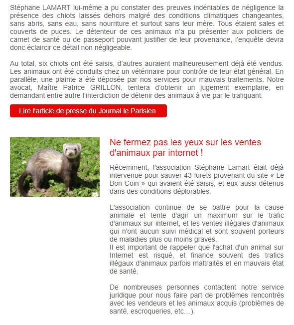 Newsletter association : l'exemple de l'association Stéphane Lamart