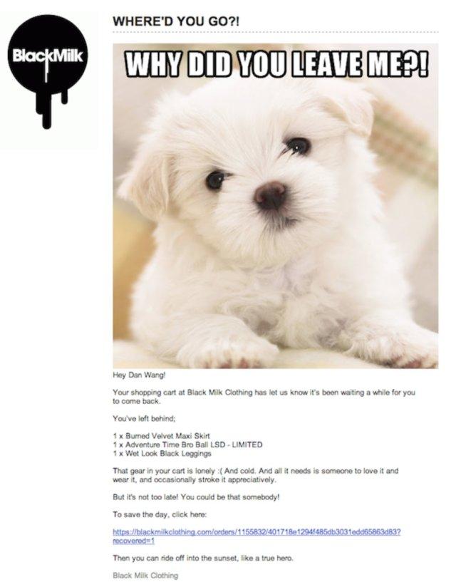 Exemple d'email de relance de panier abandonné #6 : BlackMilk