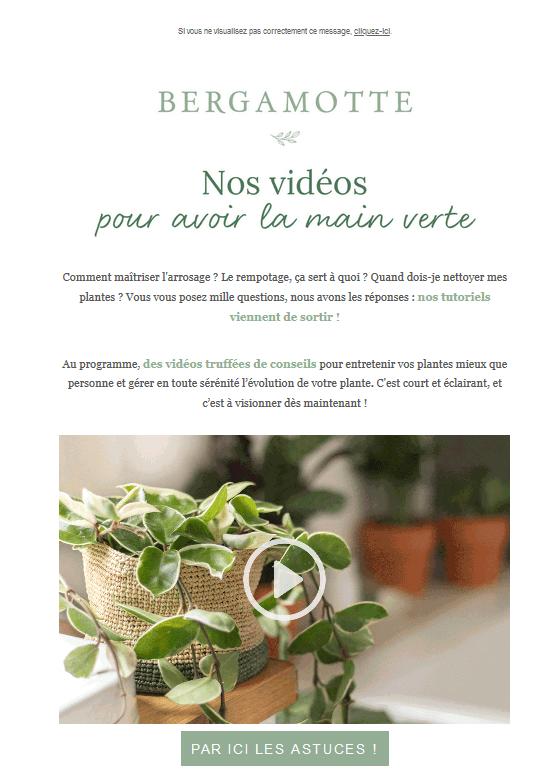 Code couleur marketing - vert