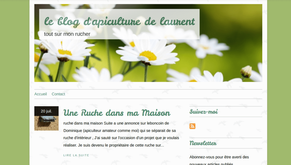Blogging -exemple blog 2